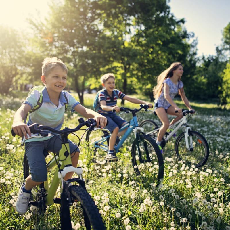 Encadrement et balade en vélo Enduro  / Vélo Enduro électrique, adulte et enfant