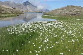 Trail avec le bureau des guides de Val Cenis