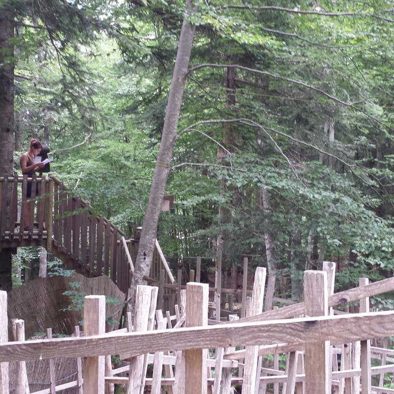 Forêt Labyrinthe au Parcours Aventure Trièves