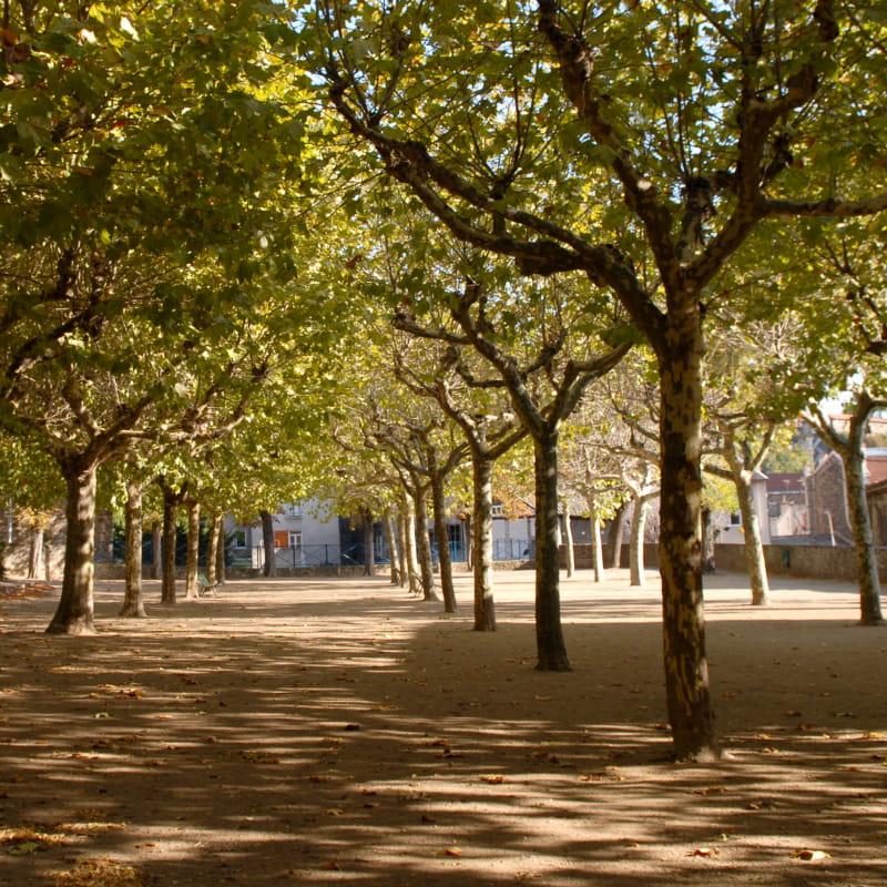 Le Chemin des Ecoliers : de Bernaudin à Van Gogh