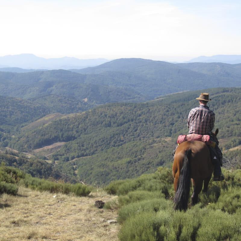 Balade et longues randonnées à cheval  - Domaine de Viaye