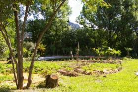 Les Jardins du Mas des Faïsses - Chalabrèges (Chassiers) - Ardèche