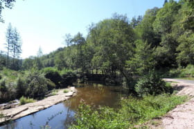 Gîte Etable du MOULIN CHATEL, à Châtel Montagne vue de la  rivière  à 200m du gite