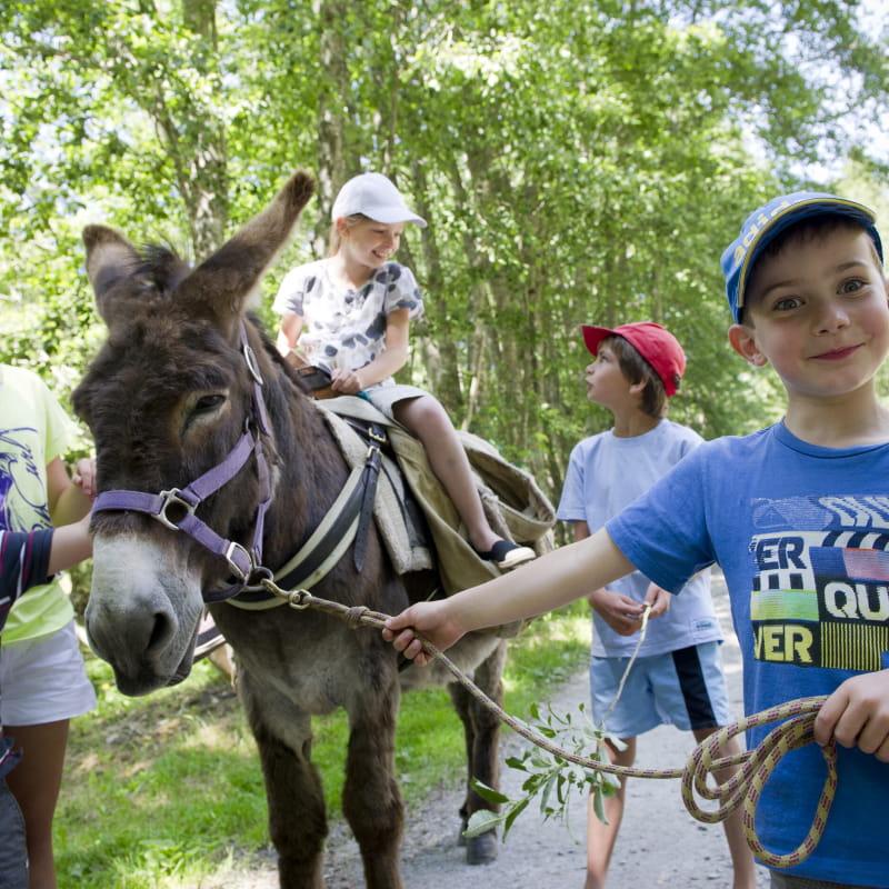 Anes et Mômes : votre randonnée avec un âne