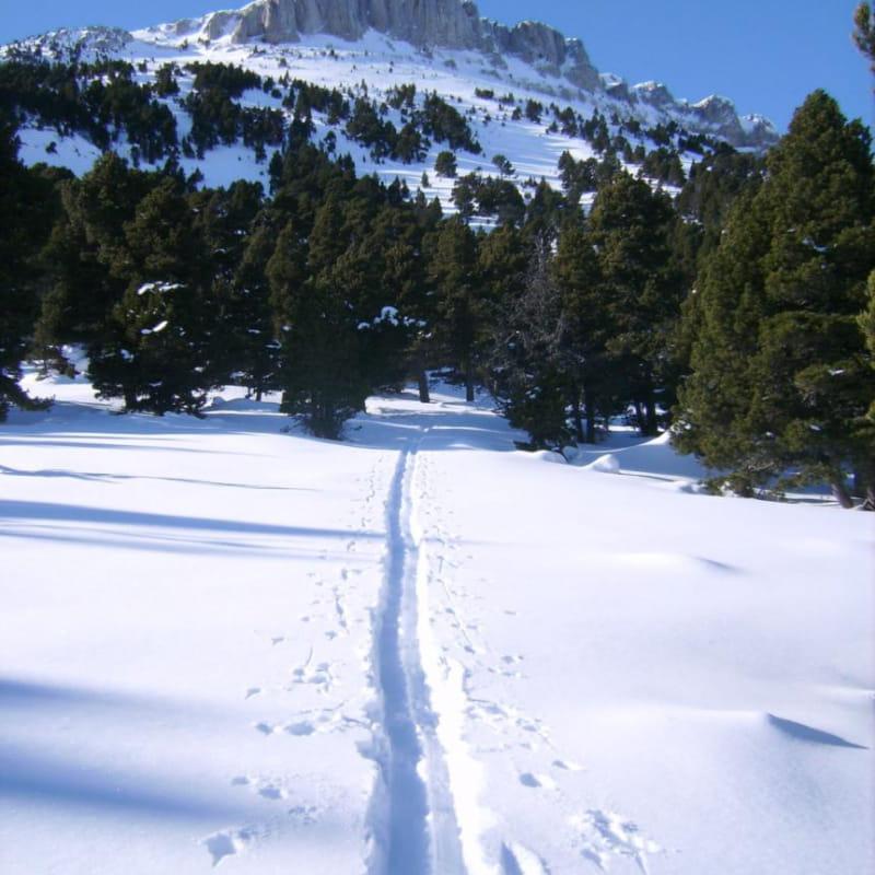 Randonnée en ski nordique avec bivouac en tente trappeur ou en refuge sur les Hauts Plateaux du Vercors