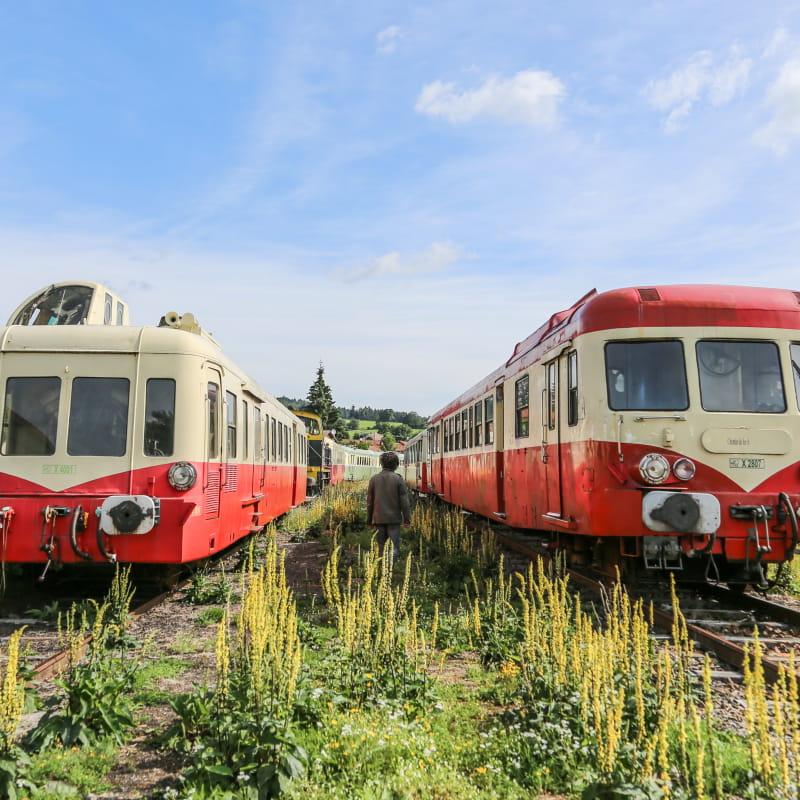 Train touristique du Haut-Forez - De juin à septembre 2015