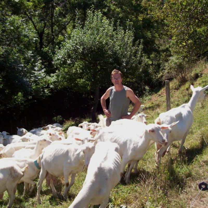 Mr Noyer et ses chèvres