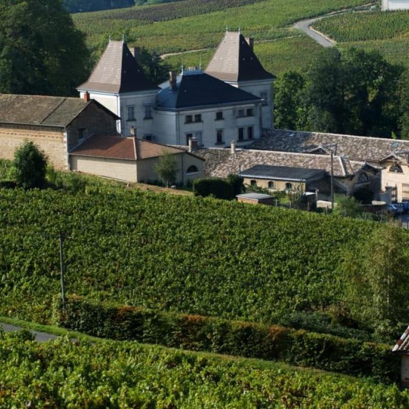 Château de Raousset à CHIROUBLES