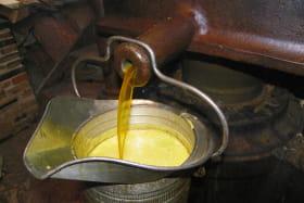Production d'huiles - le Moulin des Massons