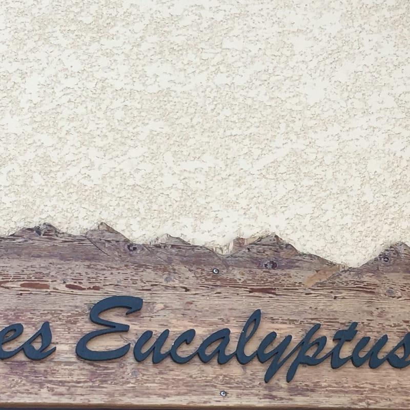 Les Eucalyptus  n°1