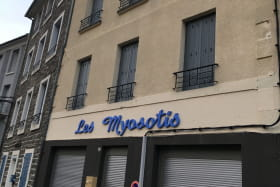 Les Myosotis