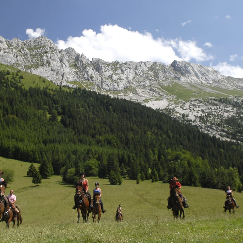Le Vercors, le paradis à cheval
