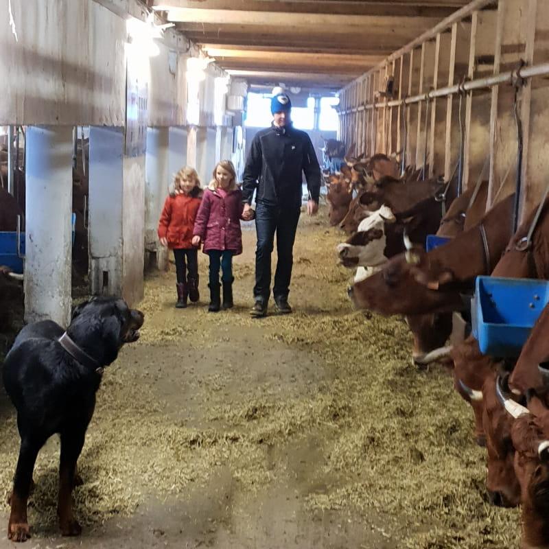 Découverte de la traite des vaches et des chèvres