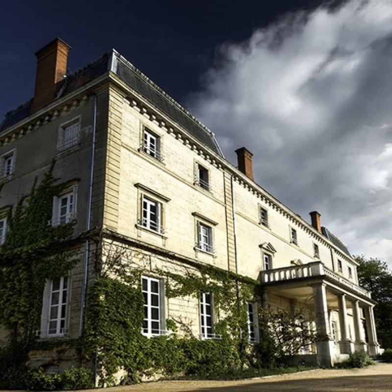 Château Bellevue - Morgon