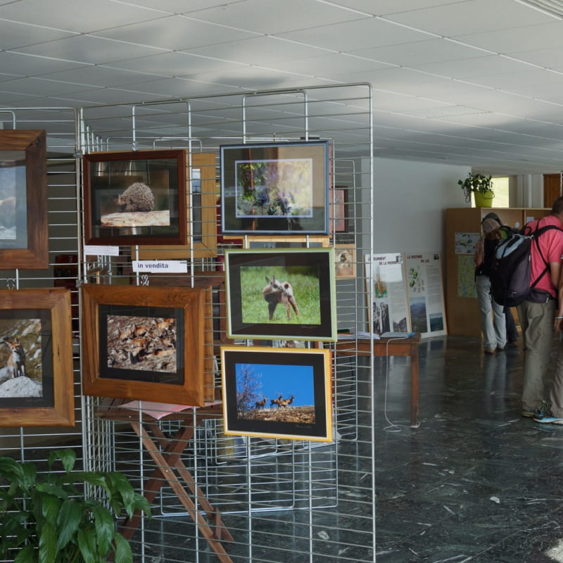 La Maison franco-itlienne du Mont Cenis; lieu d'information et d'exposition