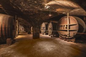 Caves de la Chartreuse