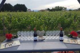 vue sur vigne et table de dégustation Domaine Lionel Brenier - Epinouze