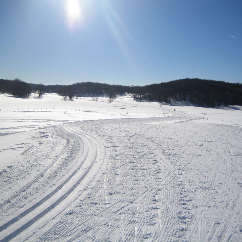 Ski Nordique aux Plans d'Hotonnes
