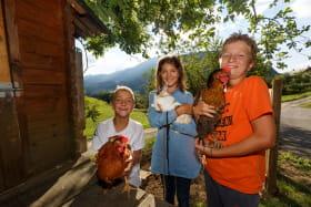 Le paradis des enfants et des animaux : poules, chat, poissons et lapin au gîte. Nos voisins chèvres, chevaux, ânes et moutons sont également adorables !