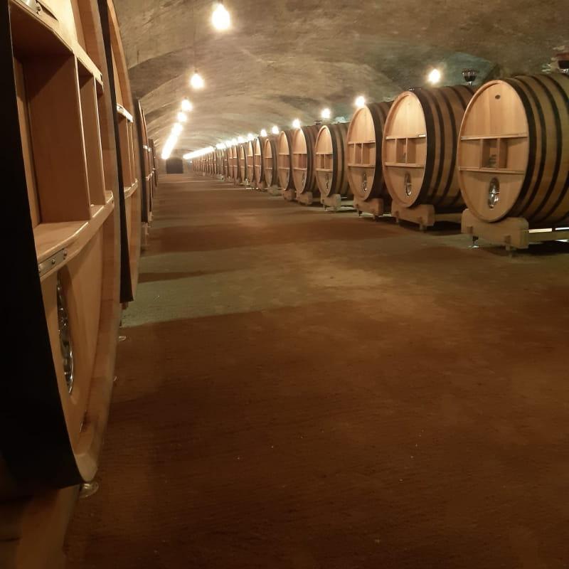 Visite commentée du chai historique et dégustation de trois vins
