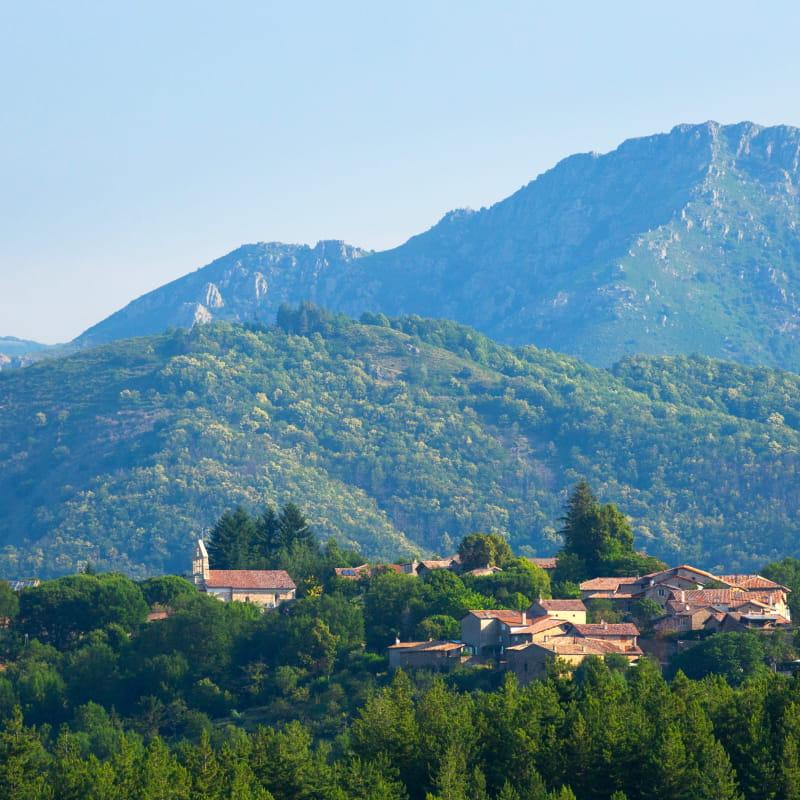 Fabras - Le village vu de la route de St Cirgues ©S.BUGNON
