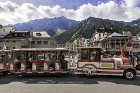 Train touristique Chamonix
