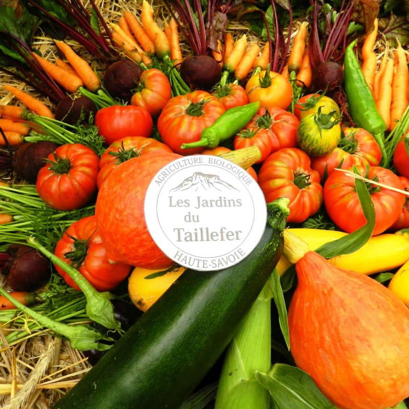 légumes d'été des Jardins du Taillefer