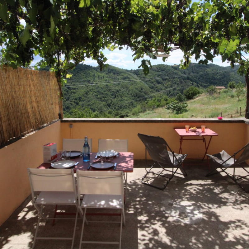 Terrasse sous la vigne
