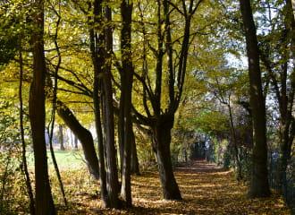 Départ de la balade- chemin des Vaudois