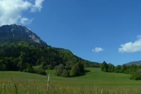 Vue panoramique sur les prés et les montagnes (Rossanaz et Margériaz) depuis la fenêtre du séjour