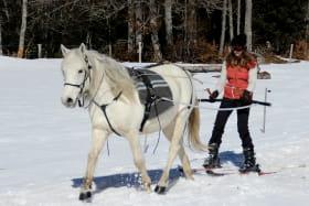 Ski joëring avec Parole de cheval