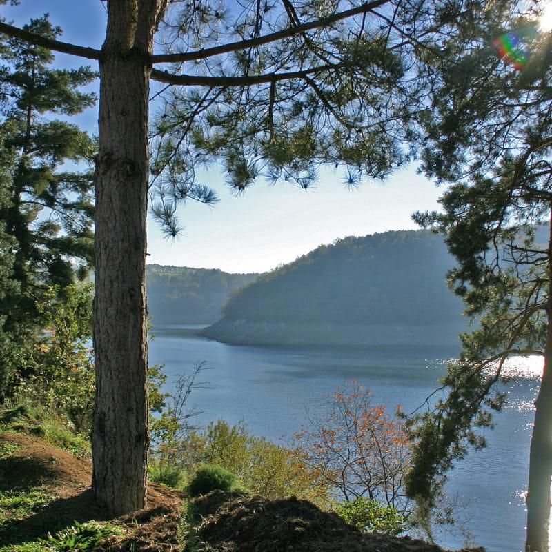Lac du Barrage Saint Etienne Cantalès - Pêche