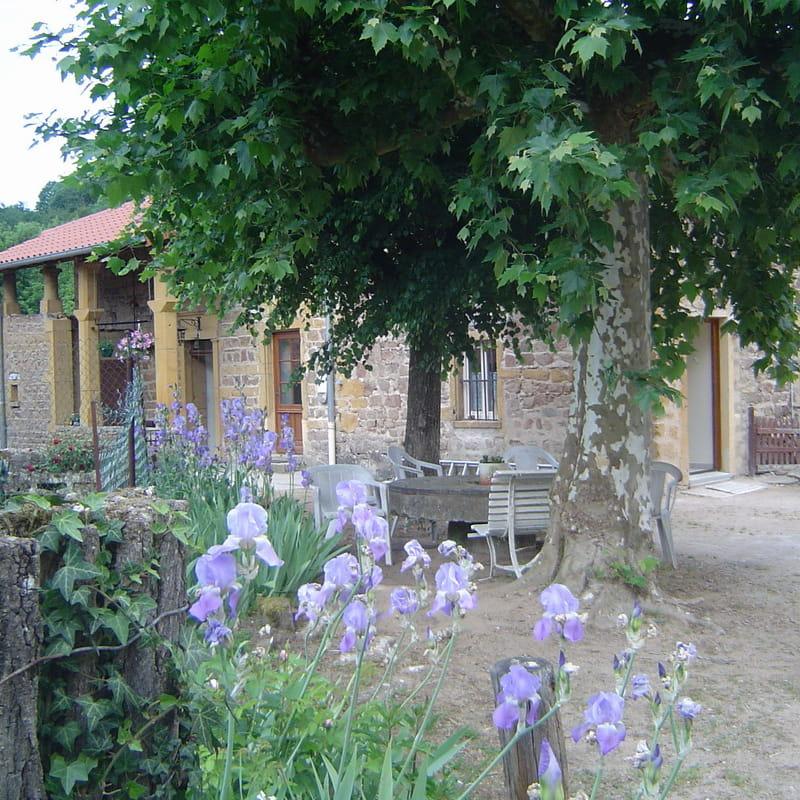 Gîte de la Turdine à Saint Romain de Popey (Rhône - Monts du Beaujolais).