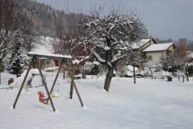 verger sous la neige