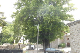 Location Les Tilleuls