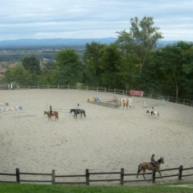 Cours d'équitation - CERF