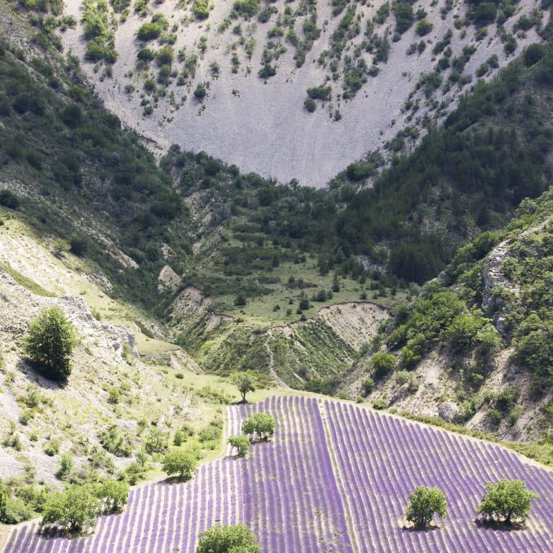 Un petit air de Provence…au Pays des Baronnies (n°12)