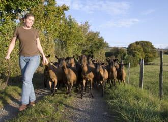 Corinne avec les chèvres