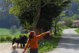 Randos pays'ânes - randonnées accompagnées d'un âne
