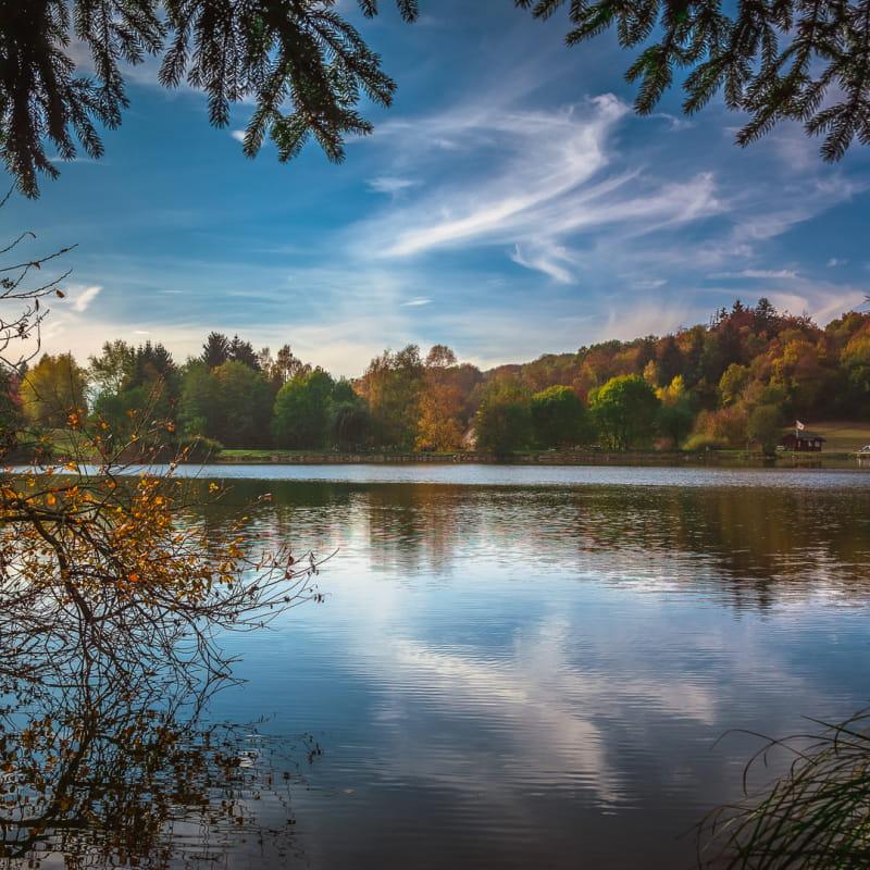 Parc des Dronières