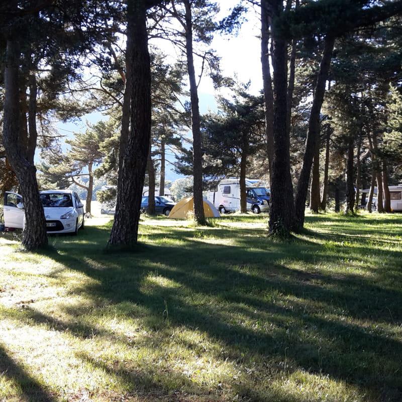 Camping les Pins
