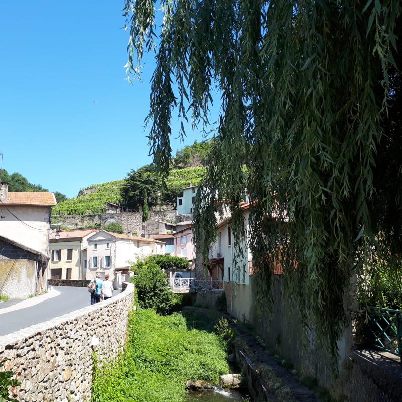 Saint Jacques à pied : De Condrieu au Puy-en-Velay