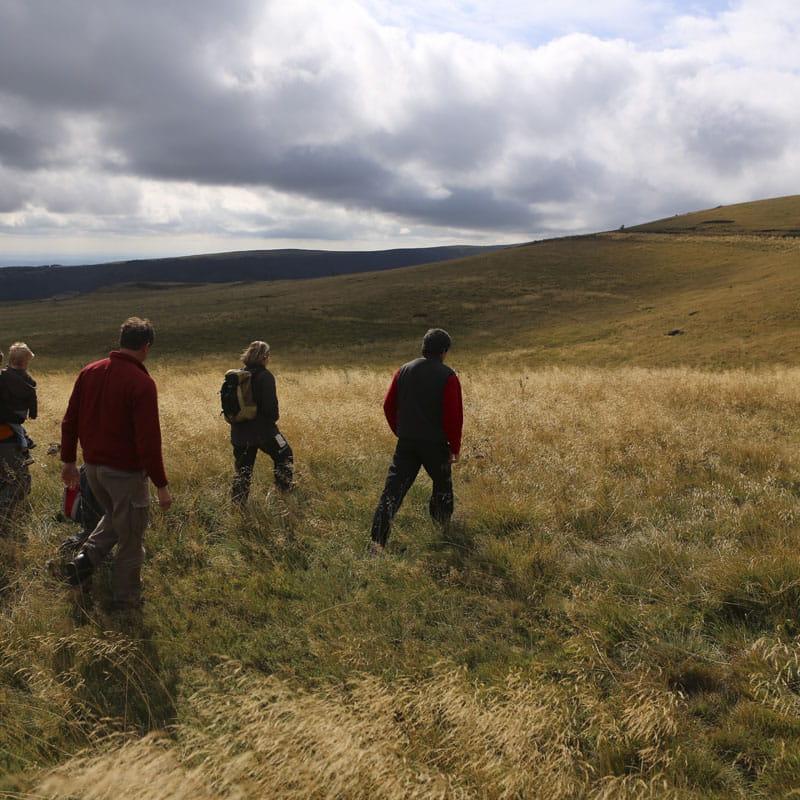 Randonnées pédestres accompagnées de Pierrefort