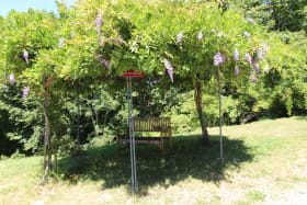 Gîte de Toléron à St Didier sur Beaujeu (Rhône - Beaujolais) :  A l'ombre de la glycine...