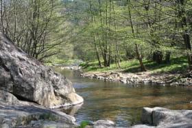 Rivière Daronne