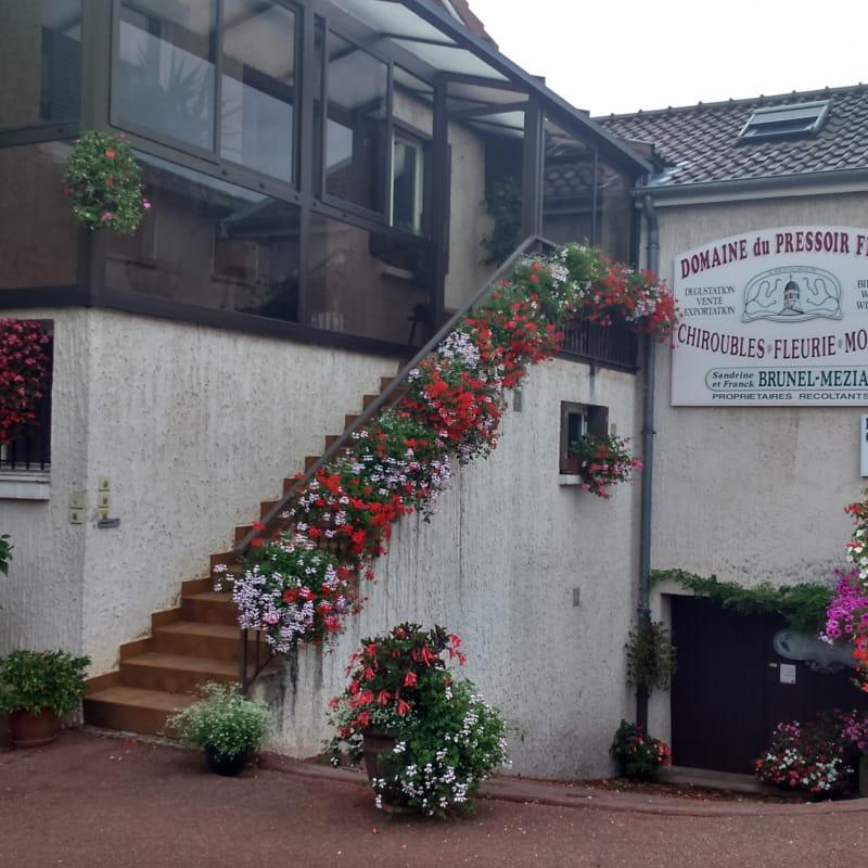 Domaine du Pressoir Fleuri à Chiroubles