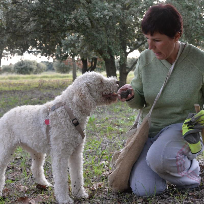 Week end découverte de la truffe