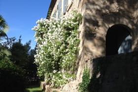 Au Château d'Uzer, une des terrasses du château, avec un magnifique rosier ancien (Bobbies James) qui grimpe sur la façade de l'aile XIXème.