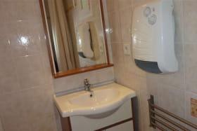 Salle d'eau : lavabo, douche.