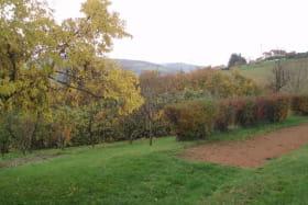 Gîte 'Les Micocouliers' à Saint Loup, Vindry-sur-Turdine (Rhône - Monts du Beaujolais, proche de Tarare) : pré et terrain de boules communs.